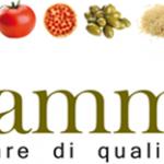 logo Mammafiore